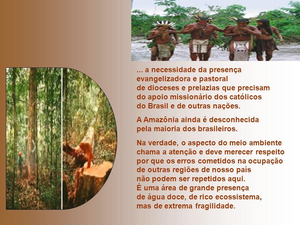 ... a necessidade da presença evangelizadora e pastoral de dioceses e prelazias que precisam do apoio missionário dos católicos do Brasil e de outras nações.