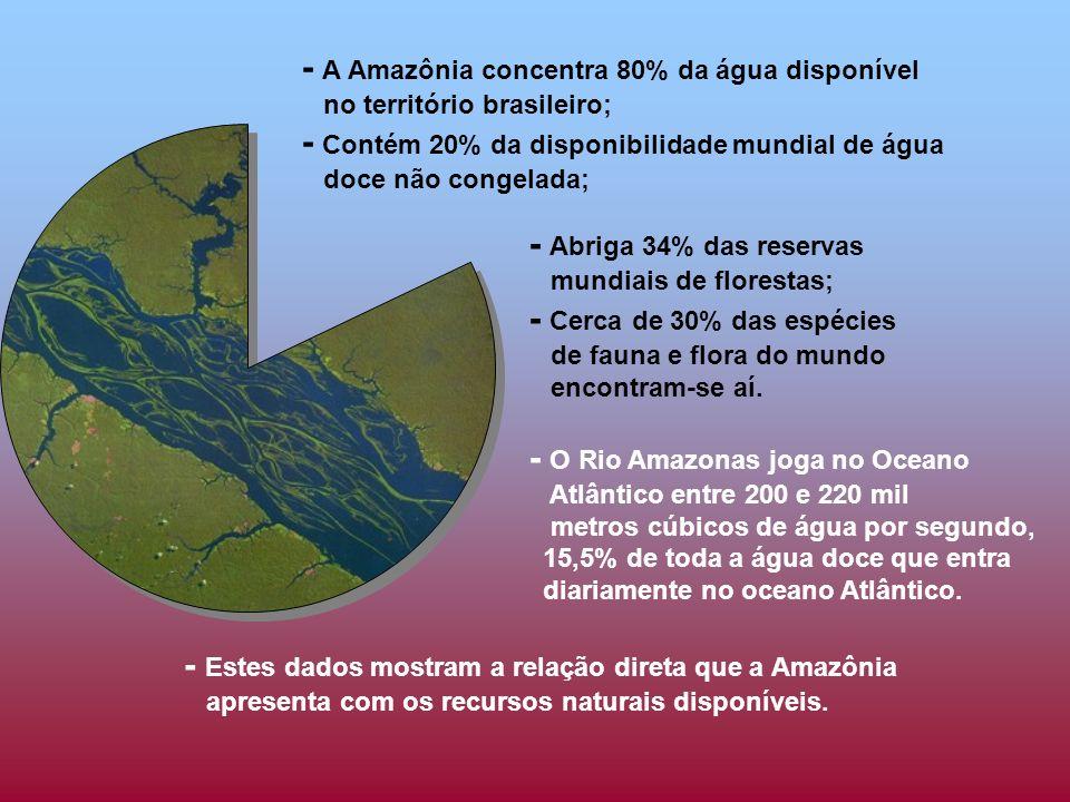 - A Amazônia concentra 80% da água disponível