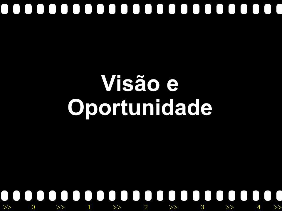 Visão e Oportunidade