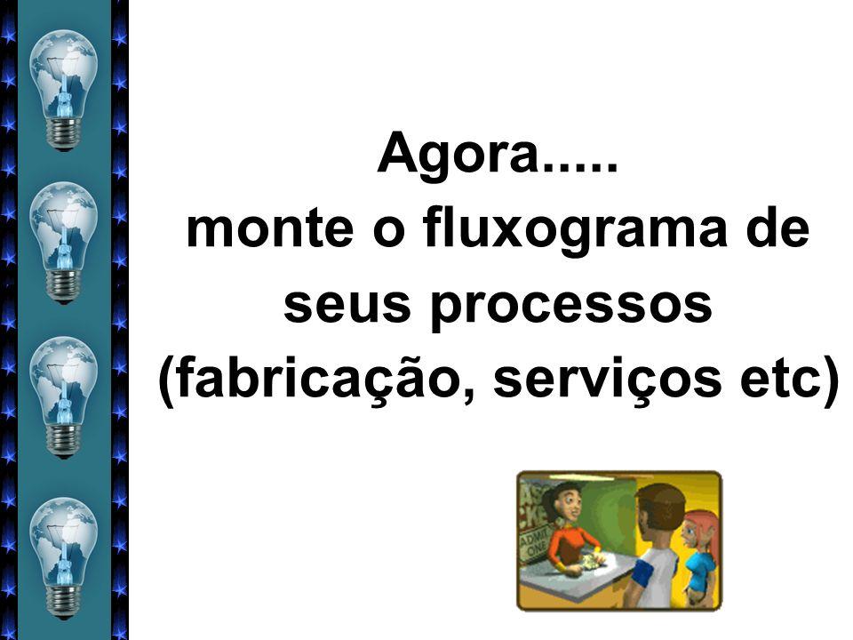 Agora..... monte o fluxograma de seus processos (fabricação, serviços etc)
