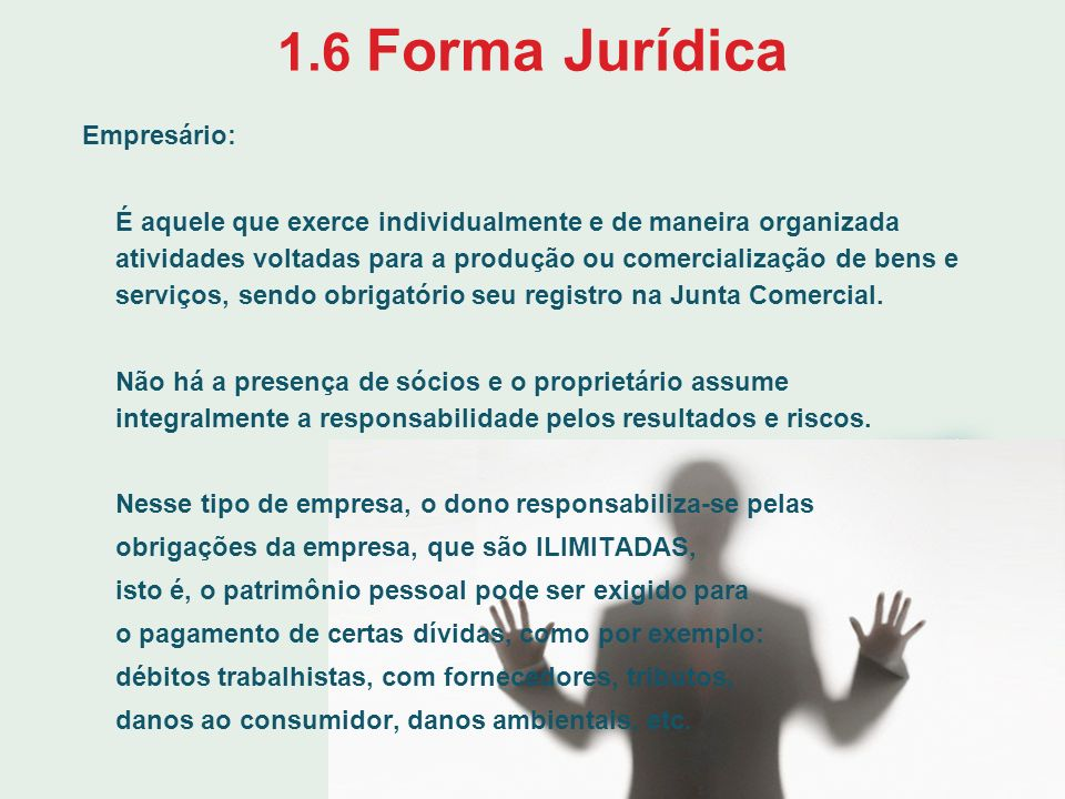 1.6 Forma Jurídica Empresário: