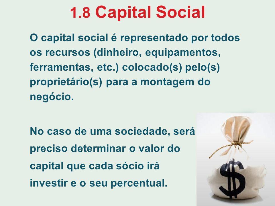 1.8 Capital Social