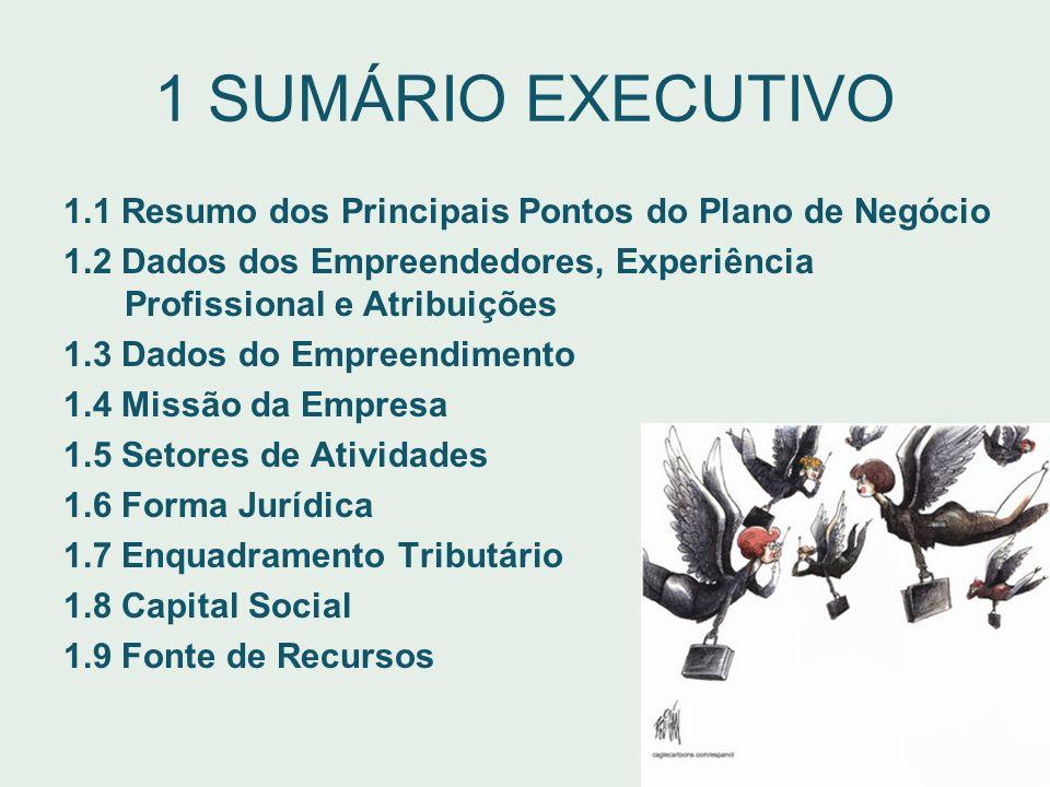 1 SUMÁRIO EXECUTIVO 1.1 Resumo dos Principais Pontos do Plano de Negócio. 1.2 Dados dos Empreendedores, Experiência Profissional e Atribuições.