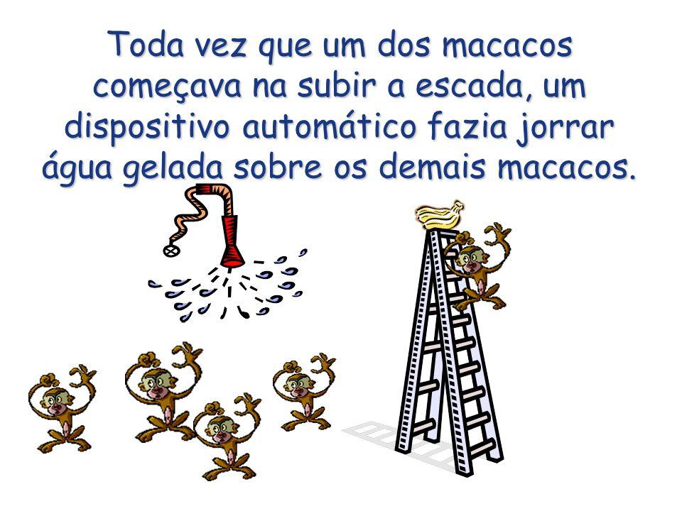 Toda vez que um dos macacos começava na subir a escada, um dispositivo automático fazia jorrar água gelada sobre os demais macacos.