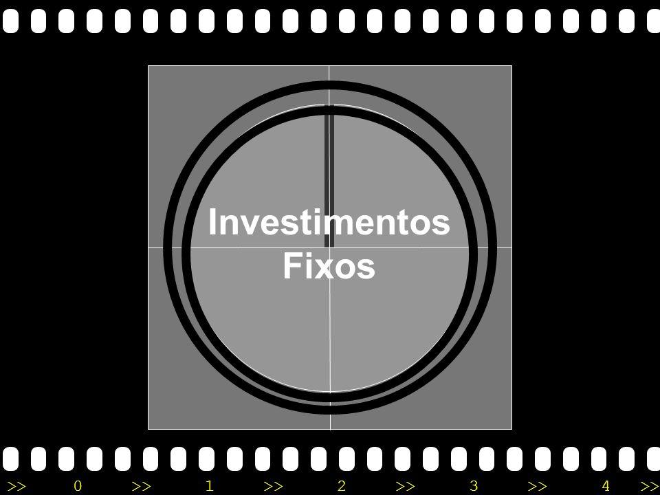 Investimentos Fixos