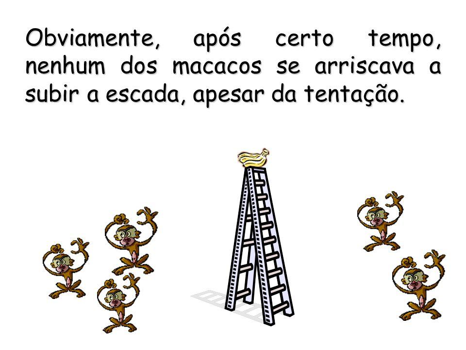 Obviamente, após certo tempo, nenhum dos macacos se arriscava a subir a escada, apesar da tentação.