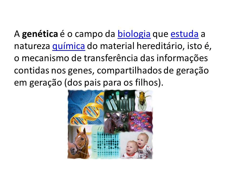 A genética é o campo da biologia que estuda a natureza química do material hereditário, isto é, o mecanismo de transferência das informações contidas nos genes, compartilhados de geração em geração (dos pais para os filhos).