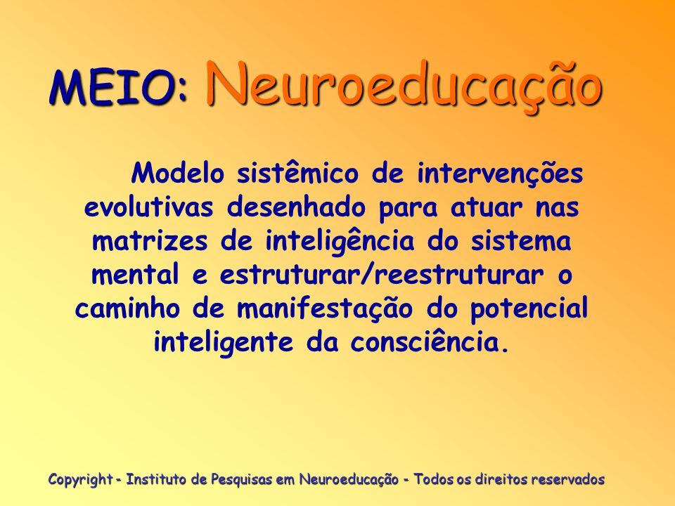 MEIO: Neuroeducação