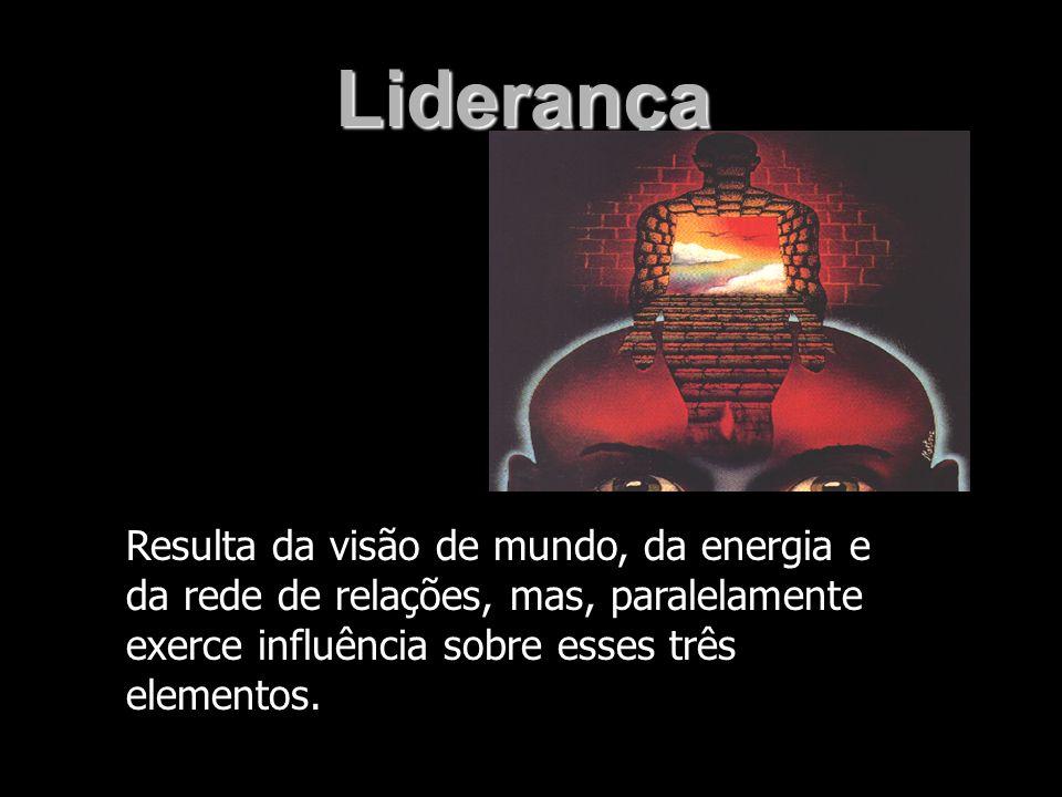 LiderançaResulta da visão de mundo, da energia e da rede de relações, mas, paralelamente exerce influência sobre esses três elementos.