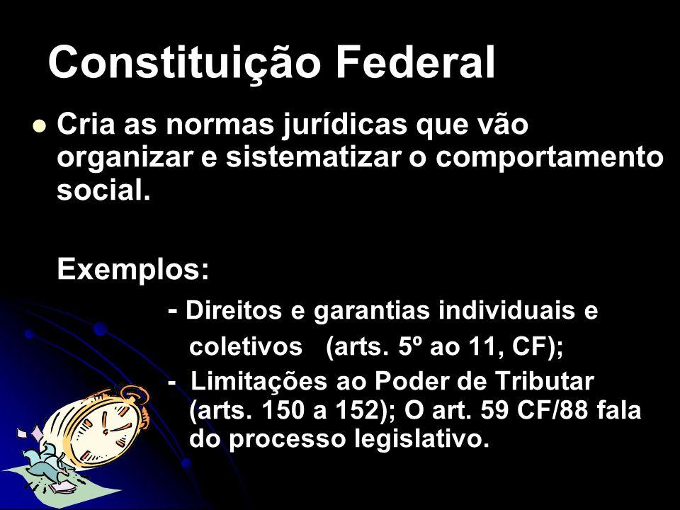 Constituição FederalCria as normas jurídicas que vão organizar e sistematizar o comportamento social.