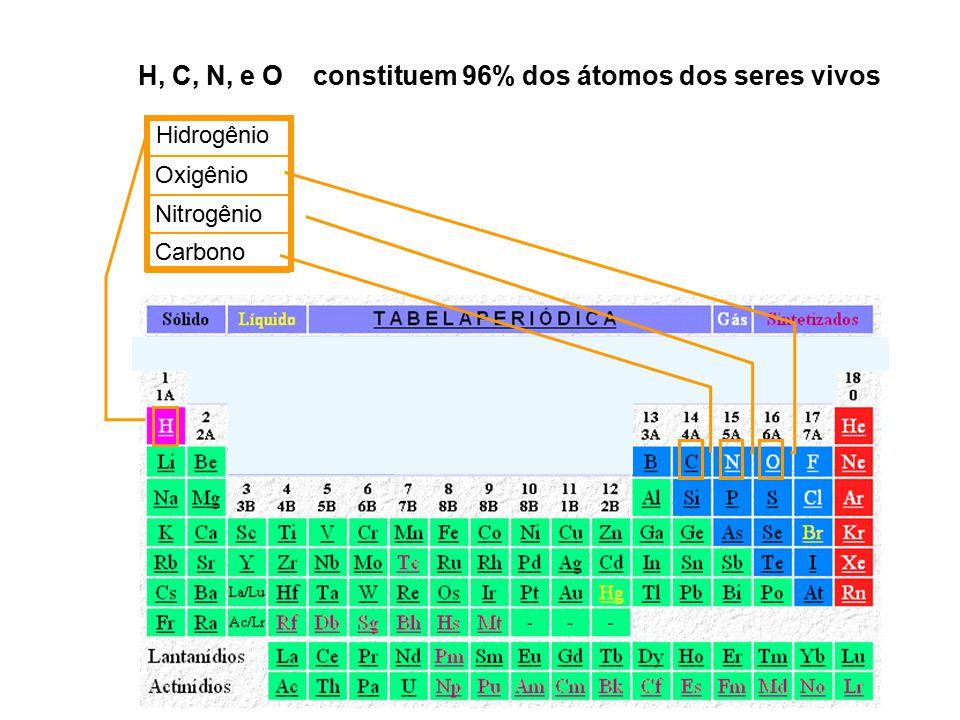 H, C, N, e O constituem 96% dos átomos dos seres vivos