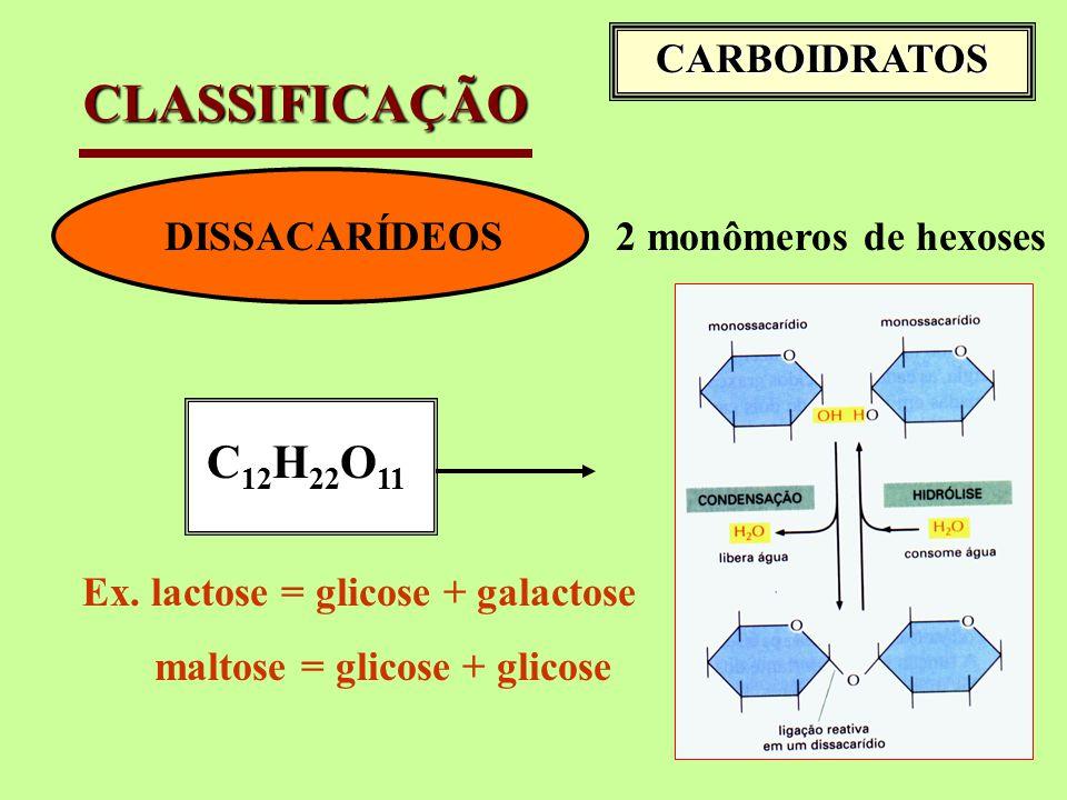 CLASSIFICAÇÃO C12H22O11 CARBOIDRATOS DISSACARÍDEOS