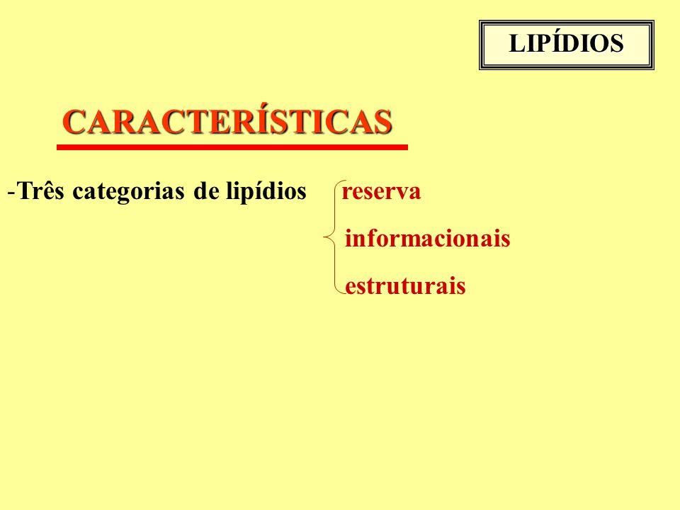 CARACTERÍSTICAS LIPÍDIOS Três categorias de lipídios reserva