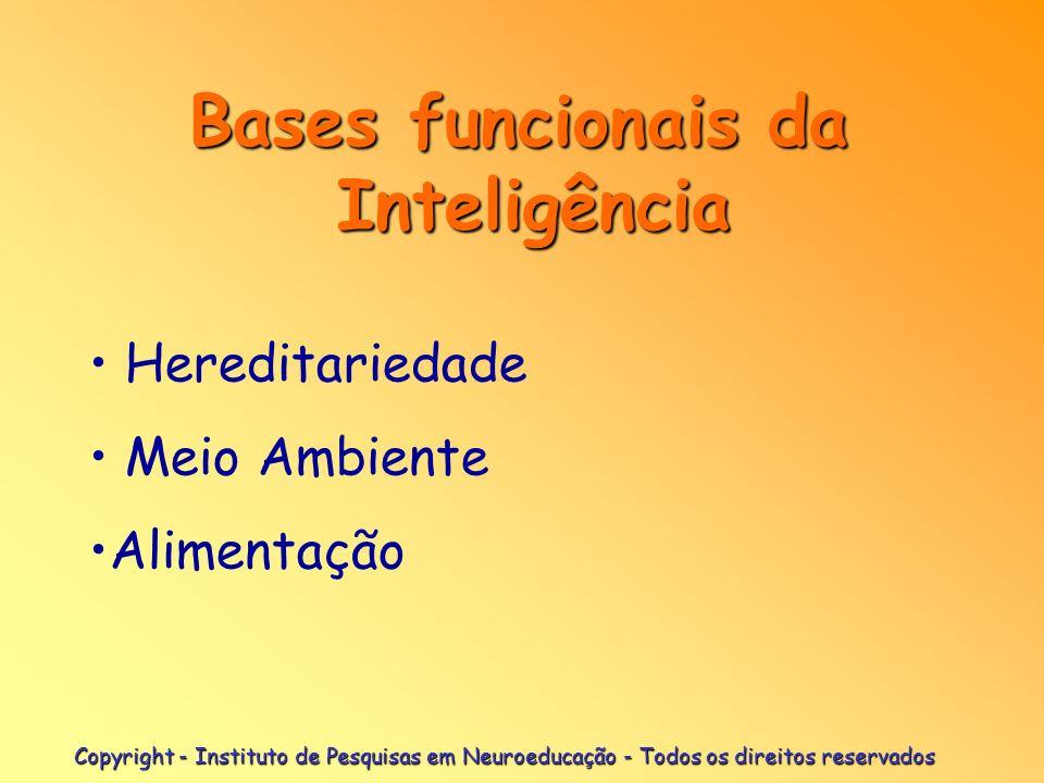 Bases funcionais da Inteligência