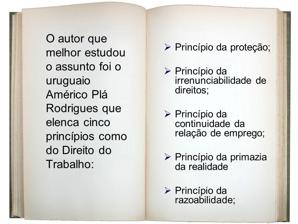 O autor que melhor estudou o assunto foi o uruguaio Américo Plá Rodrigues que elenca cinco princípios como do Direito do Trabalho: