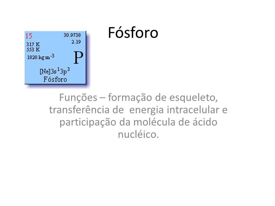 FósforoFunções – formação de esqueleto, transferência de energia intracelular e participação da molécula de ácido nucléico.