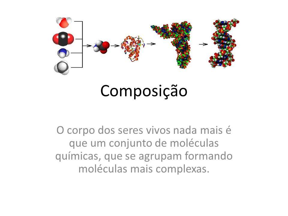ComposiçãoO corpo dos seres vivos nada mais é que um conjunto de moléculas químicas, que se agrupam formando moléculas mais complexas.
