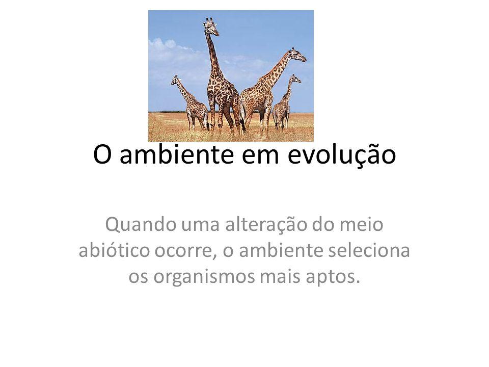 O ambiente em evolução Quando uma alteração do meio abiótico ocorre, o ambiente seleciona os organismos mais aptos.