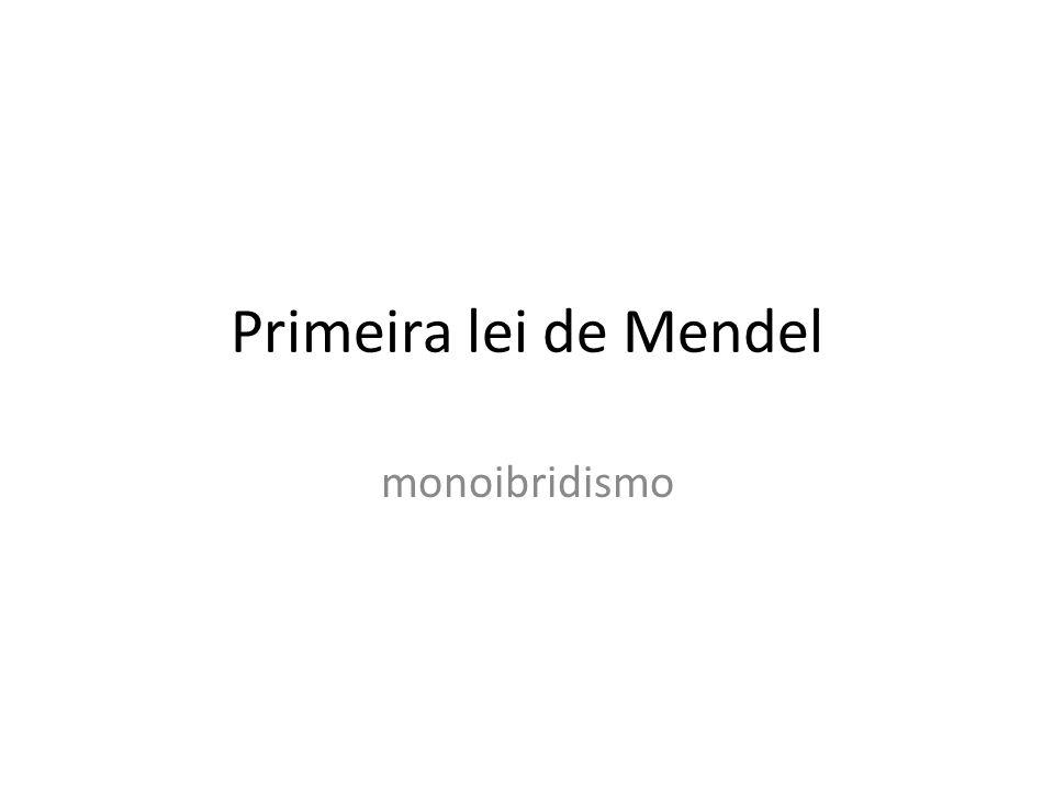 Primeira lei de Mendel monoibridismo