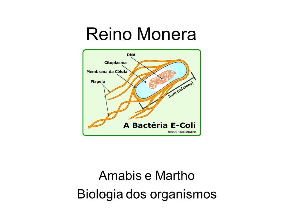 Amabis e Martho Biologia dos organismos