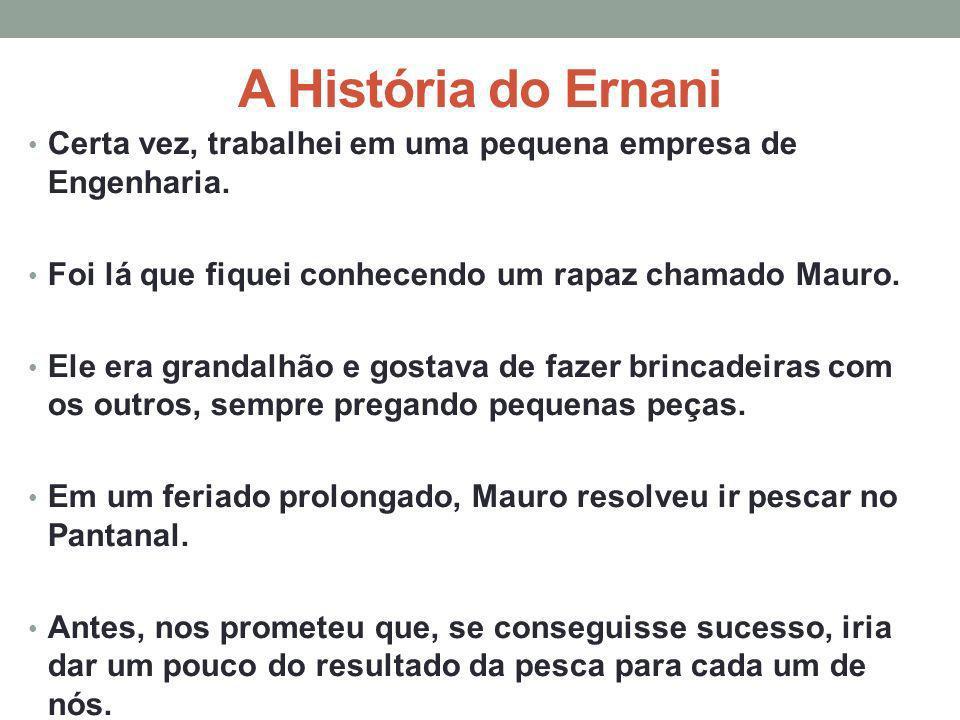 A História do Ernani Certa vez, trabalhei em uma pequena empresa de Engenharia. Foi lá que fiquei conhecendo um rapaz chamado Mauro.