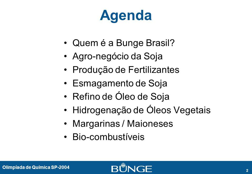 Agenda Quem é a Bunge Brasil Agro-negócio da Soja