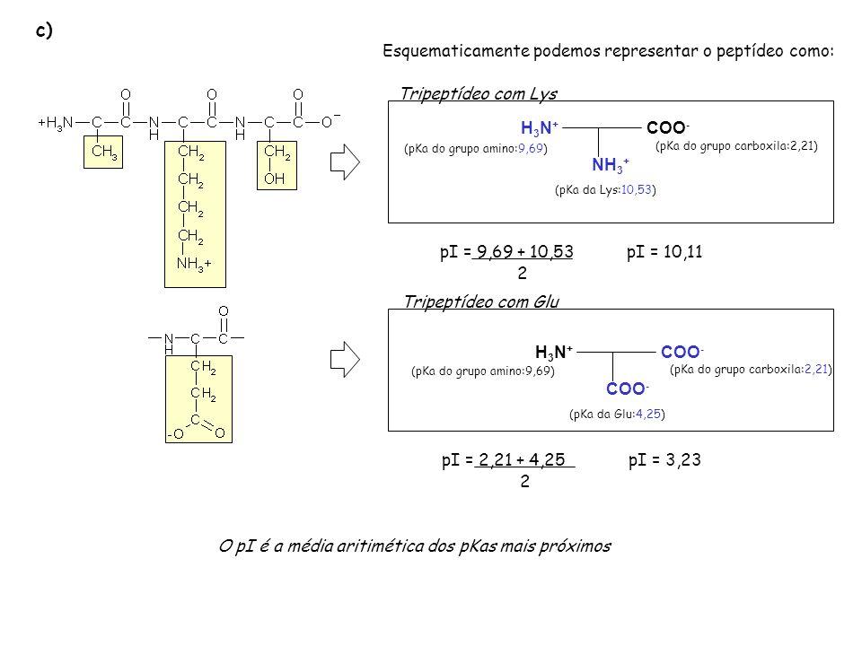 c) Esquematicamente podemos representar o peptídeo como: