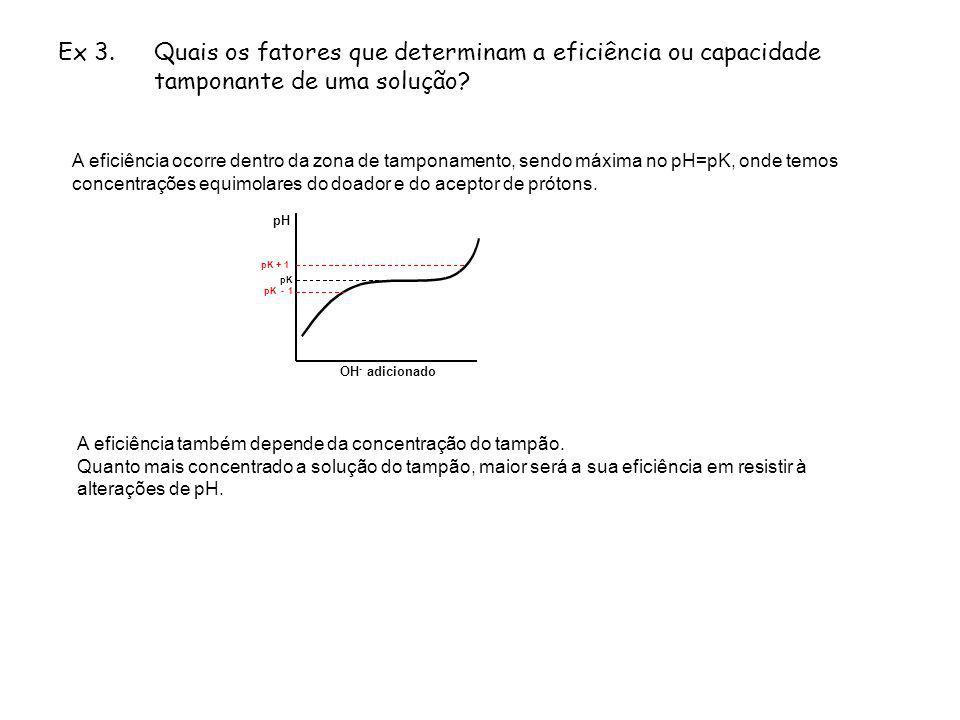 Ex 3. Quais os fatores que determinam a eficiência ou capacidade