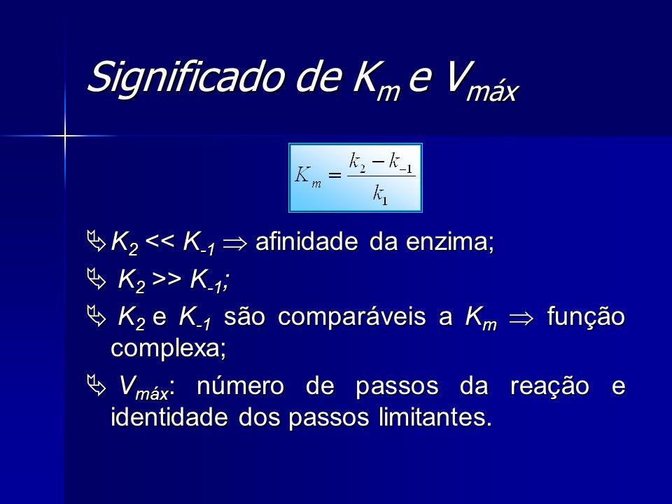 Significado de Km e Vmáx