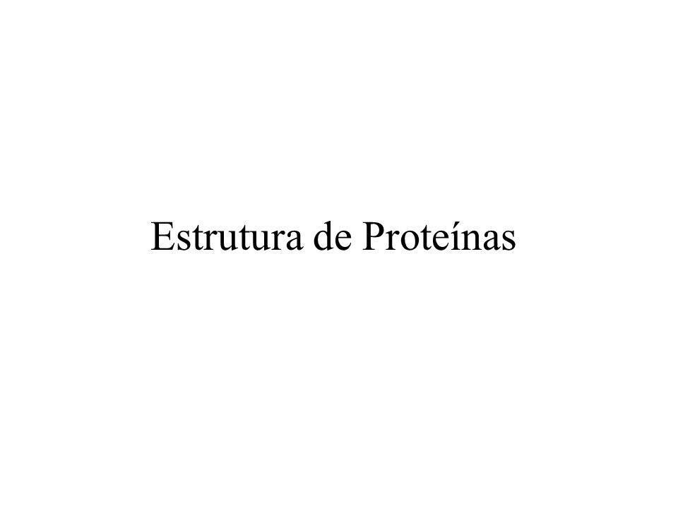 Estrutura de Proteínas