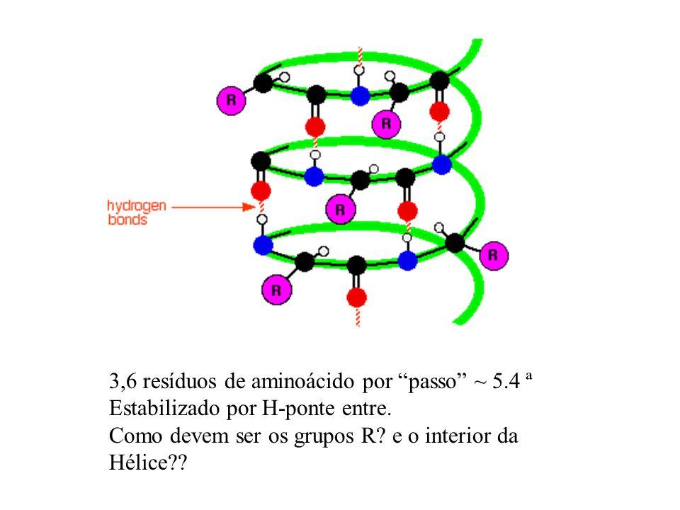 3,6 resíduos de aminoácido por passo ~ 5.4 ª