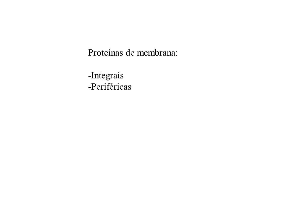 Proteínas de membrana: