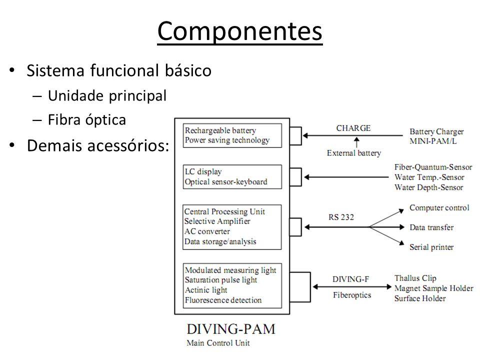 Componentes Sistema funcional básico Demais acessórios: