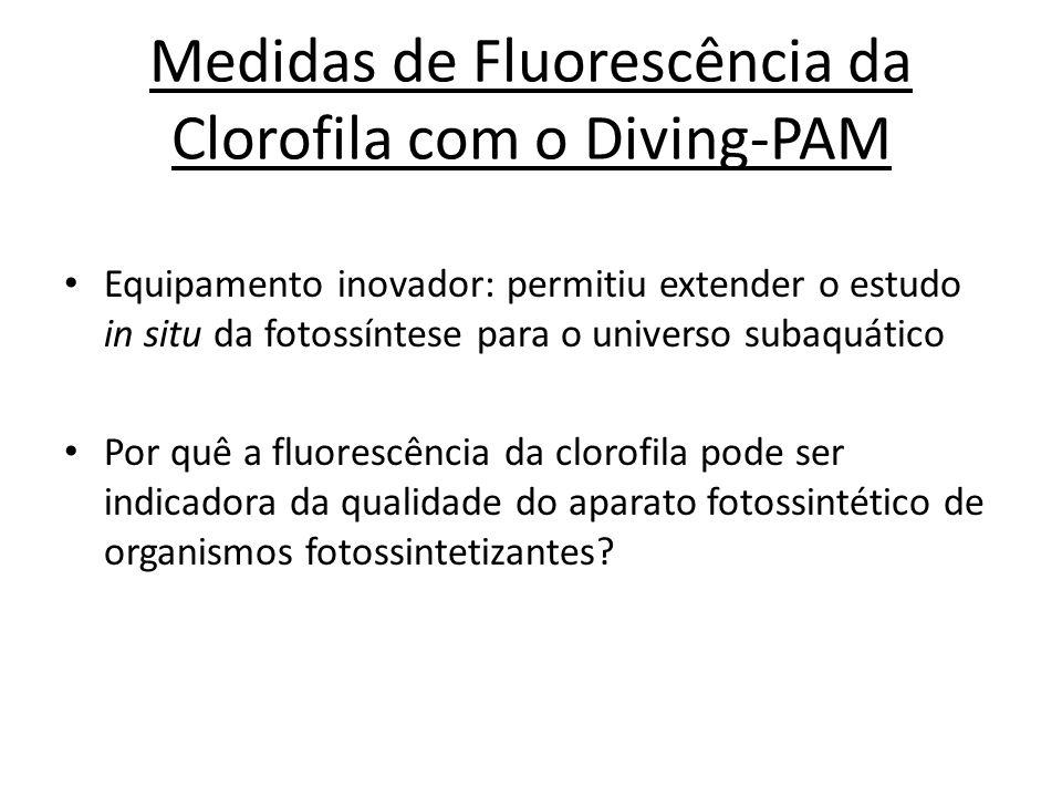 Medidas de Fluorescência da Clorofila com o Diving-PAM