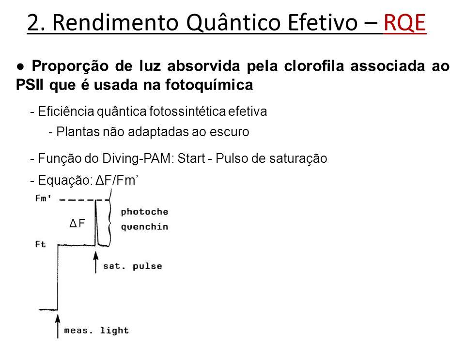 2. Rendimento Quântico Efetivo – RQE