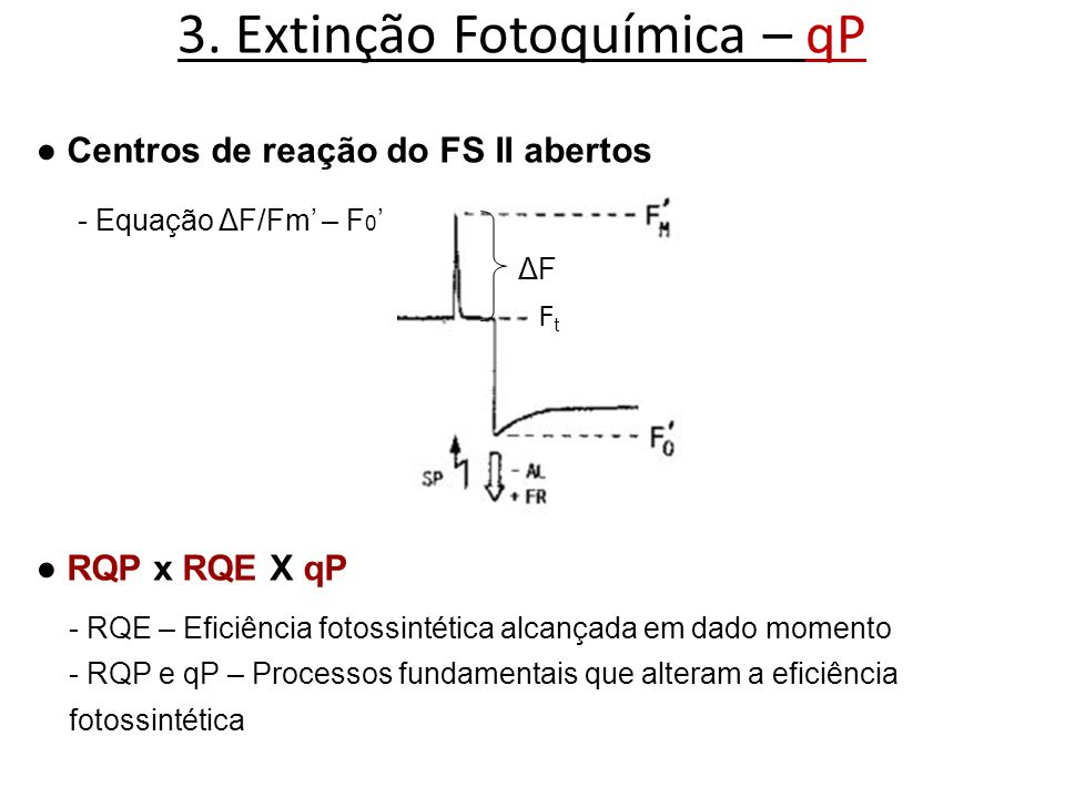 3. Extinção Fotoquímica – qP