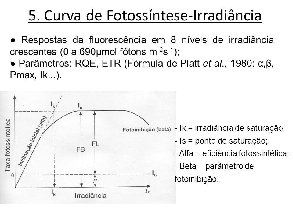 5. Curva de Fotossíntese-Irradiância