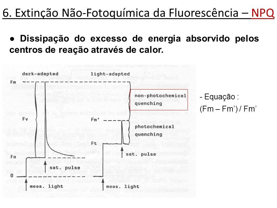 6. Extinção Não-Fotoquímica da Fluorescência – NPQ