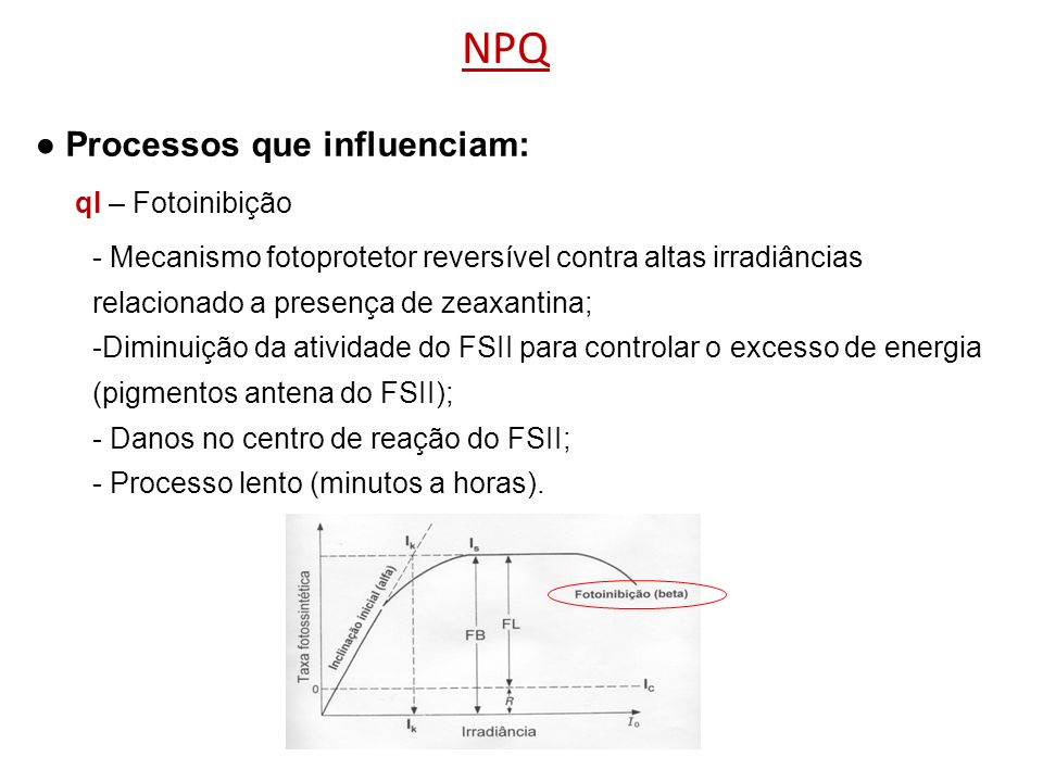 ● Processos que influenciam: