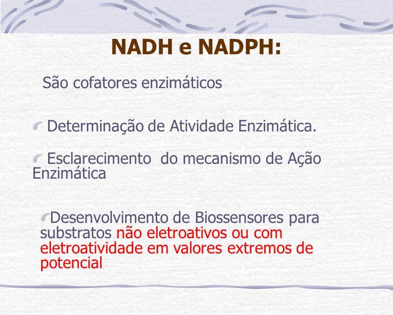 NADH e NADPH: São cofatores enzimáticos