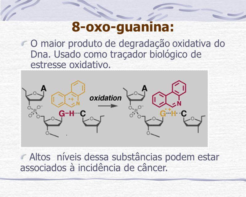 8-oxo-guanina: O maior produto de degradação oxidativa do Dna. Usado como traçador biológico de estresse oxidativo.