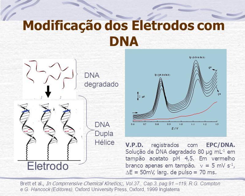 Modificação dos Eletrodos com DNA