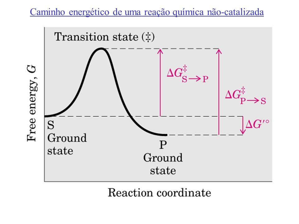 Caminho energético de uma reação química não-catalizada