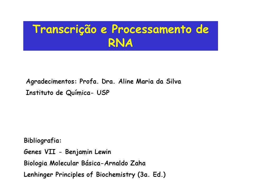 Transcrição e Processamento de RNA