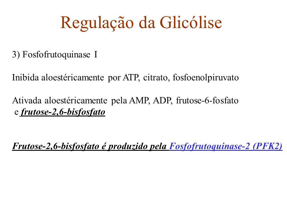 Regulação da Glicólise