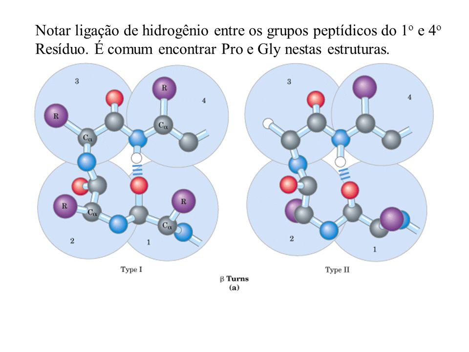 Notar ligação de hidrogênio entre os grupos peptídicos do 1o e 4o