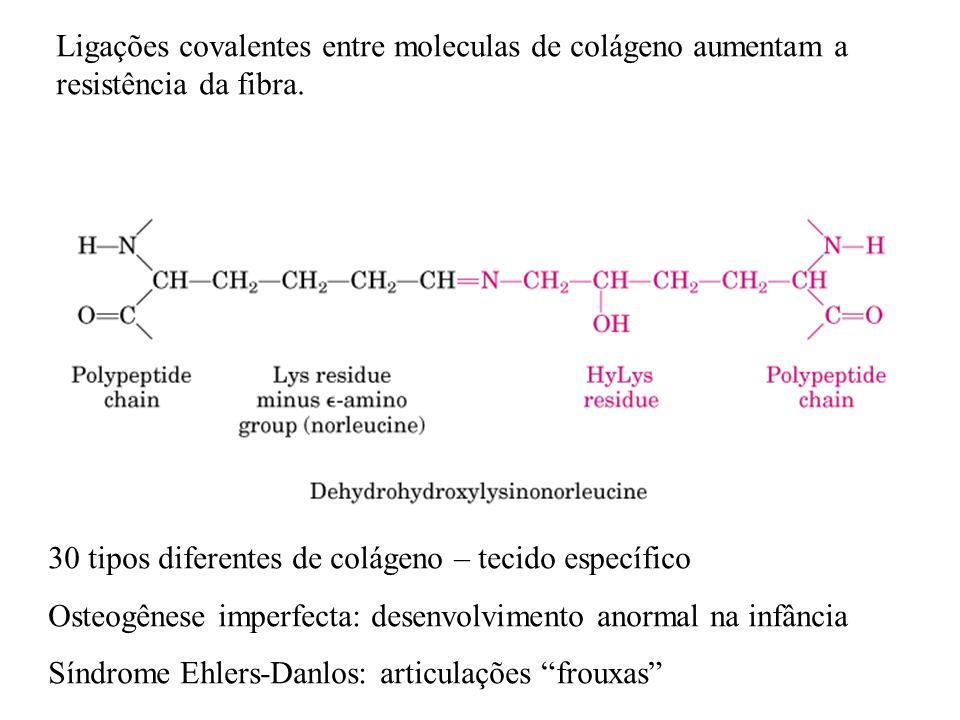 Ligações covalentes entre moleculas de colágeno aumentam a