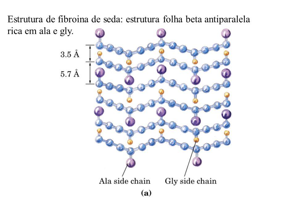 Estrutura de fibroina de seda: estrutura folha beta antiparalela
