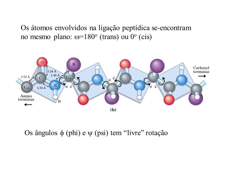 Os átomos envolvidos na ligação peptídica se-encontram