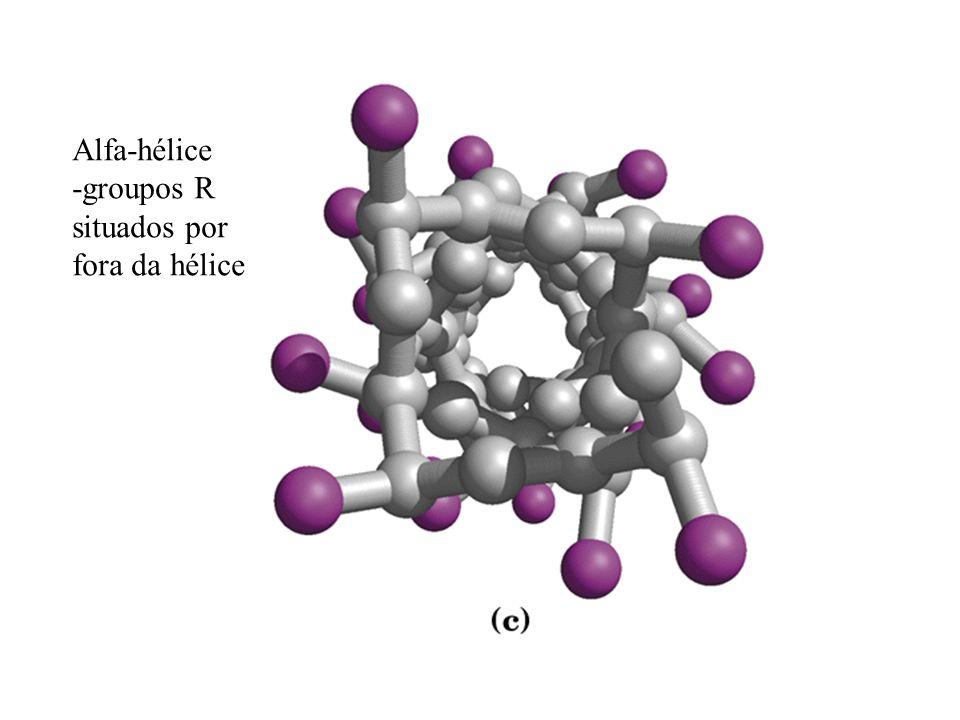Alfa-hélice -groupos R situados por fora da hélice